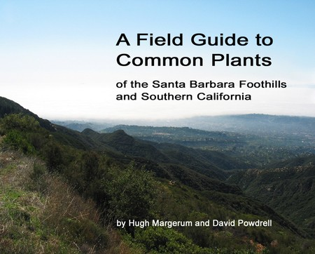 A Field Guide to Common Plants
